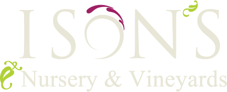 ison's nursery and vineyards logo