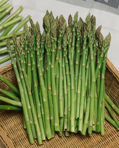 Mary Washington Asparagus.