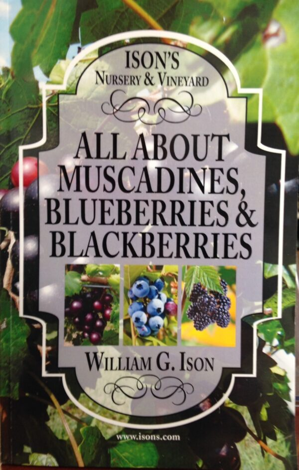 All About Muscadines by Bill Ison