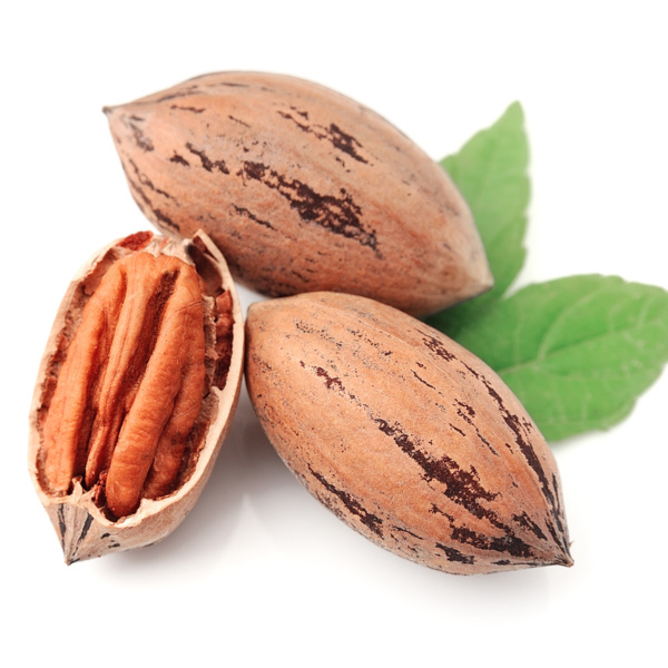 Amling Pecan Tree. High quality medium size nuts that are easy to shell. 57 nuts per lb. Zones 6-10.