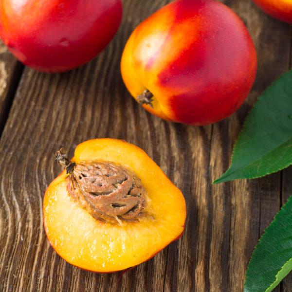 Fantasia Nectarine Tree I O Ison S Nursery Amp Vineyard
