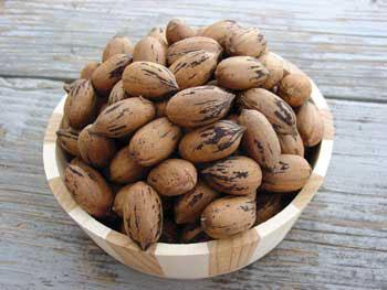 Pawnee Pecan Tree... Dwarf tree, early maturing. Large nuts with high yields. Zones 6-10.