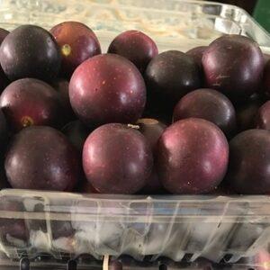 Fresh Fruit Muscadines
