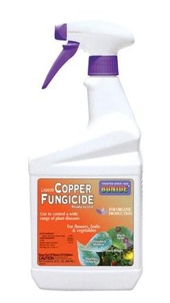 Bonide Copper Fungicide (Brodeaux)