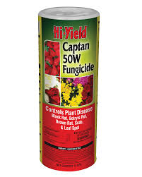 Disease & Insecticides