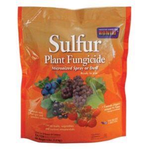 Organic Growing Supplies