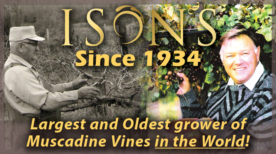 https://www.isons.com/wp-content/uploads/2017/05/Grandpa-Dad-largest-grower.jpg