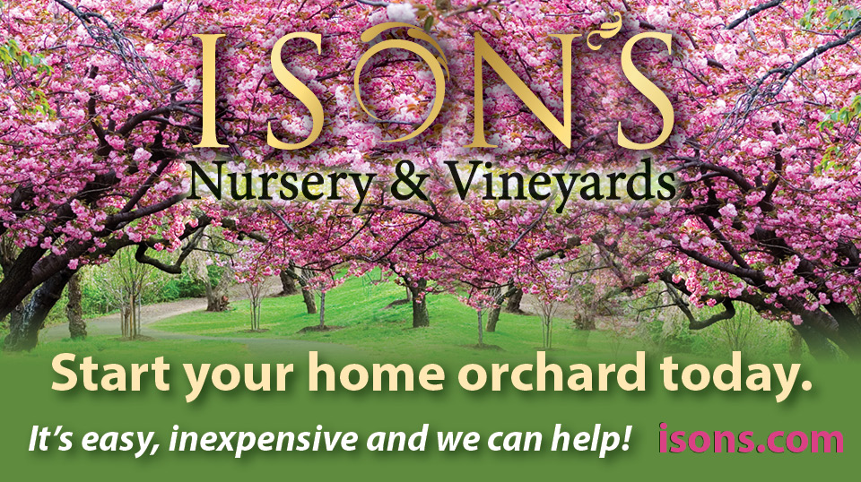 The Tradition Of Ison S Ison S Nursery Amp Vineyard