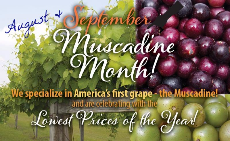 https://www.isons.com/wp-content/uploads/2018/08/Muscadine-Month-Save25-September-700x428-Banner-August.jpg